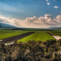 Панорама долины Нетофа :: Леонид Лившиц