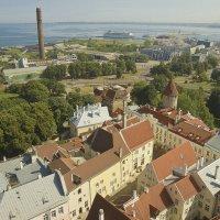 Таллинский порт :: leo yagonen