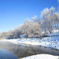 Снежные берега :: Андрей Снегерёв
