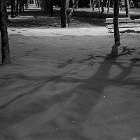 Снег пророчит мне боль  от любви, от весны,  забирает покой,  навевает мне сны… :: Ирина Данилова