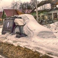 Зимовье. (рабочее название - подснежник) :: Евгений Поляков
