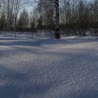 Зимняя панорама :: Андрей Чиченин
