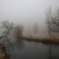 Тишина... :: Дмитрий Сажин