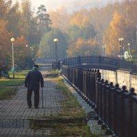 в осень :: андрей