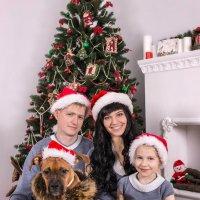 Друг семьи :: Таня Мазур