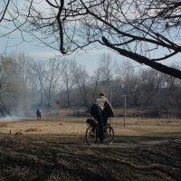 Велосипедист :: Николай Филоненко
