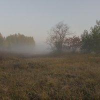 Осенний туман :: Валентин Котляров