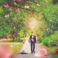 Весенняя свадьба :: Ильмира Насыбуллина