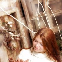 Зимой букеты с шишками. :: Белла Витторф