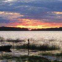 Закат над Финским заливом :: Марина Щуцких