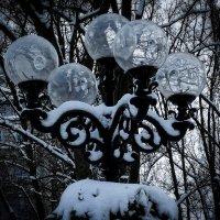 Зима.Вечер. Парковый фонарь :: Владимир Бровко