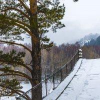 старый мост :: Евгений Головин