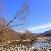 На реке Шахе :: Tata Wolf