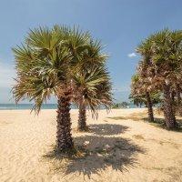 пляж Karon :: Дамир Белоколенко