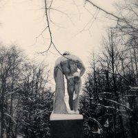 Зимняя тоска :: Цветков Виктор Васильевич