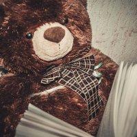 Чтение медведя :: Света Кондрашова