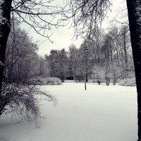 пейзаж :: Татьяна Осипова(Deni2048)