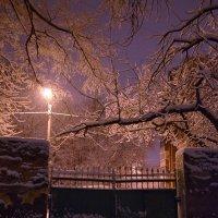Февральская погодка :: Татьяна Кретова