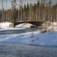 старинный мост в охотничьих угодьях :: sv.kaschuk