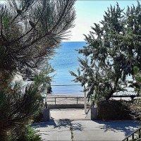 Спуск к Азовскому морю :: Нина Корешкова