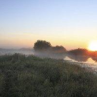 Туманное утро :: Сергей Михайлович