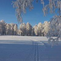 Зима не хочет уходить :: Николай Мальцев