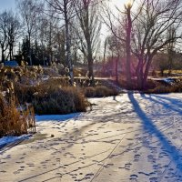 следы на снегу... :: юрий иванов