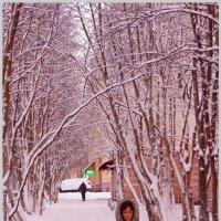 Когда Снежно и Розово... :: Кай-8 (Ярослав) Забелин