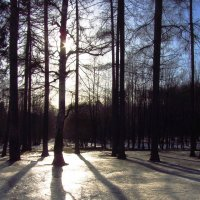 Img_9688 :: Андрей Лукьянов