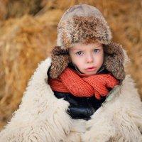 В студеную Русскую зиму.. :: Римма Федорова