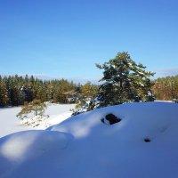 Зимнее озеро :: Swetlana V