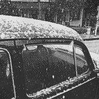 Накрыло снегом :: alisa kuznechik