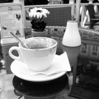 Чашка выпитого кофе :: Алла ************