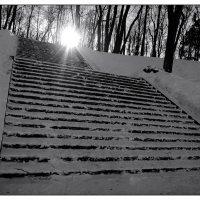 лестница :: sv.kaschuk