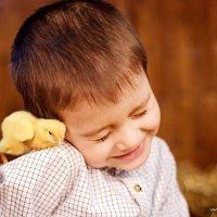 Цыплячьи нежности :: Татьяна Лядова
