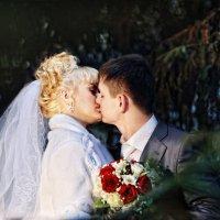 поцелуй :: Светлана Гребцова
