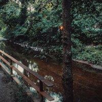 Dumborton park :: Ольга Макашова