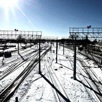 Солнечный зимний день :: Natali