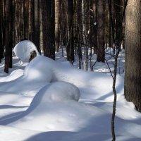 игра тени со снегом (снежный зверь) :: petyxov петухов
