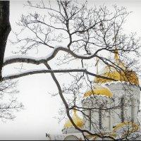 У храма! :: Владимир Шошин