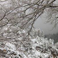 Зима в горах :: Иля Григорьева