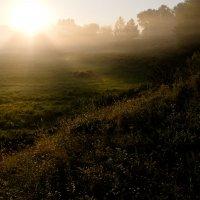 Рисунок солнечных лучей :: Александр Крупский