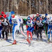 Зима-2015 :: Олег Карташов