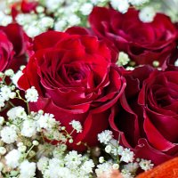 Цветы невесты :: Svetlana Nefedova