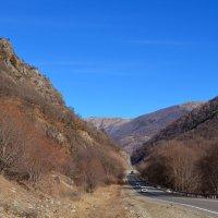 Дорога в горы :: Marina Timoveewa