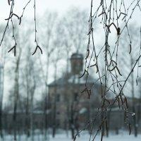 Зимний парк :: Alex Urb