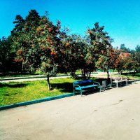 Лето :: Azam Ibrahim