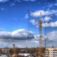 Низкий и высокий :: Андрей Куприянов