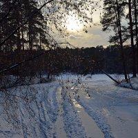 Последние аккорды зимы :: Ольга Русанова (olg-rusanowa2010)