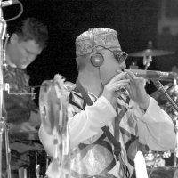 ...и соло на флейте... :: Александр Герасенков